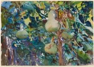 Gourds by John Singer Sargent. (Watercolor. 1908. Brooklyn Museum.)