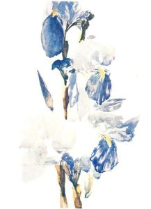 Irises by Edouard Manet. (Watercolor on paper. 1880. Private Collection.) Not in Brooklyn exhibition. Click to enlarge.