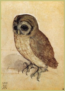 The Little Owl by Albrecht Dürer (Watercolor on paper. 1506. Albertina, Vienna, Austria.) Click to enlarge.
