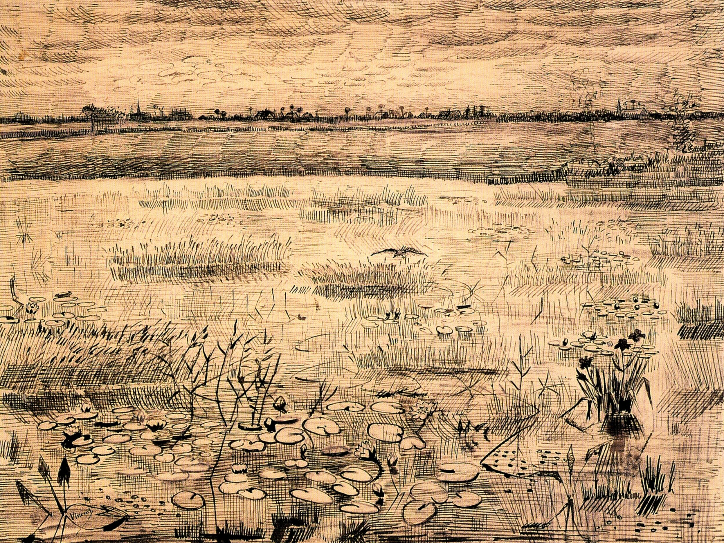 what nature meant to van gogh hidden cause visible effects van gogh as his best interpreter marsh water lillies etten ink on paper 1881 virginia museum of