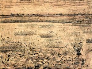 Marsh with Water Lillies, Etten. Ink on paper. 1881. Virginia Museum of Fine Art, Richmond.
