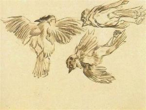 1. Studies of a Dead Sparrow. 1889-90. Chalk on paper. Van Gogh Museum, Amsterdam.
