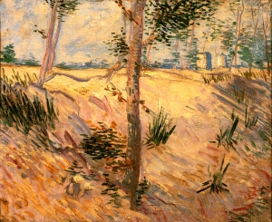 19. Trees in a Field on a Sunny Day. Oil on Canvas. 1886. P. & N. de Boer Foundation, Amsterdam.