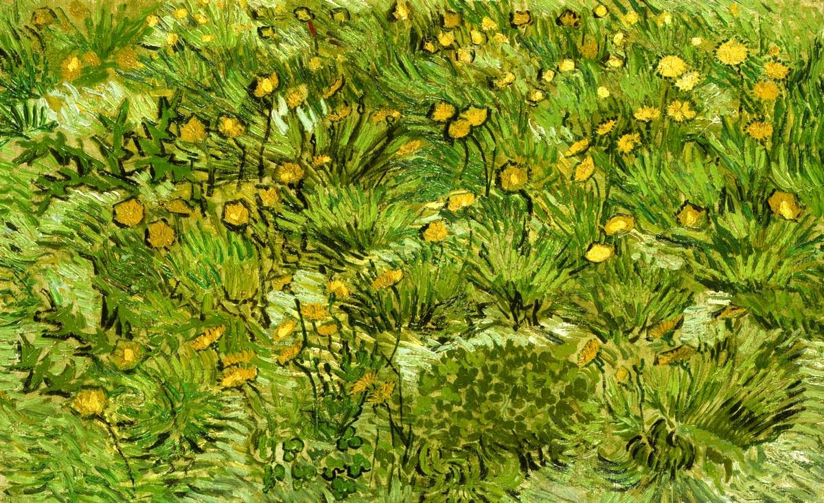 What Nature Meant To Van Gogh Hidden Cause Visible Effects