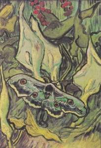 30. ,i.Giant Peacock Moth. 1889. Oil on canvas. Van Gogh Museum, Amsterdam.